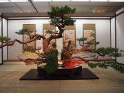 映画「花戦さ」に登場した池坊専好が生けた巨大な松